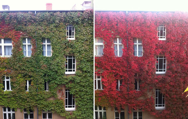 same-place-different-season-before-after-4