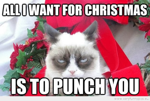Christmas-Grumpy-Cat-091