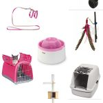 Christmas gifts for pets special – for your best friend